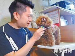 https://walkdog.com.hk/wp-content/uploads/2018/12/6_medium-240x180.jpg