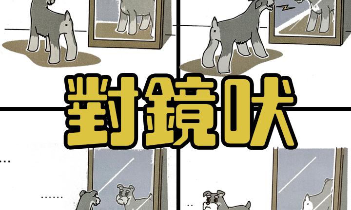 寵物保姆對鏡吠